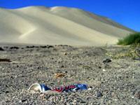 US-50, Sand Mountain, Nevada, August 2006
