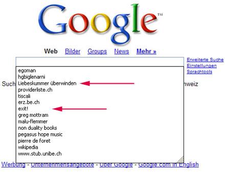 Suchmaschinenabfragen in einem Computerpool der PH Bern, Januar 2007