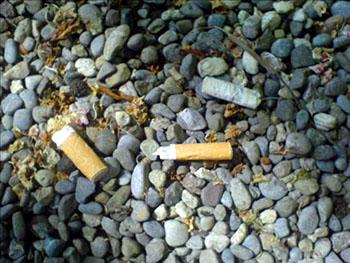 Zigarettenkippen am Boden: Die meisten Raucher kümmerts nicht, dass Kinder hier nicht spielen können (Mai 2008)